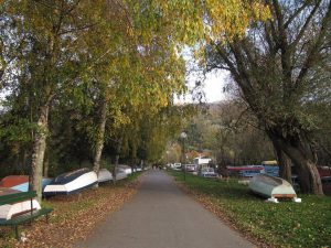 Канал Студенчишко блато август 2016